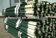2017 Alibaba gold supplier Cheap Galvanized/PVC coated Used Steel Fence T Post for sale (Factory)