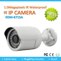 Best price Outdoor 1.0MP ip cctv security camera