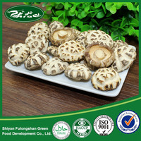 Chinese Food Edible Fungi Edible Mushroom 4-5cm Dried White Flower Mushrooms