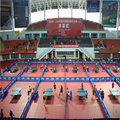 lTTF/Table Tennis court floor