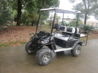 sport golf 2 seater small golf cart
