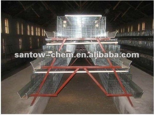 industrial poultry farm design for Africa