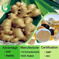 Chinese Herb Yellow Ginger Powder Ginger Extract Powder