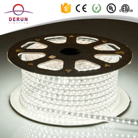 Outdoor waterproof 100Meter roll CE ROHS 5050 led stripe 230v