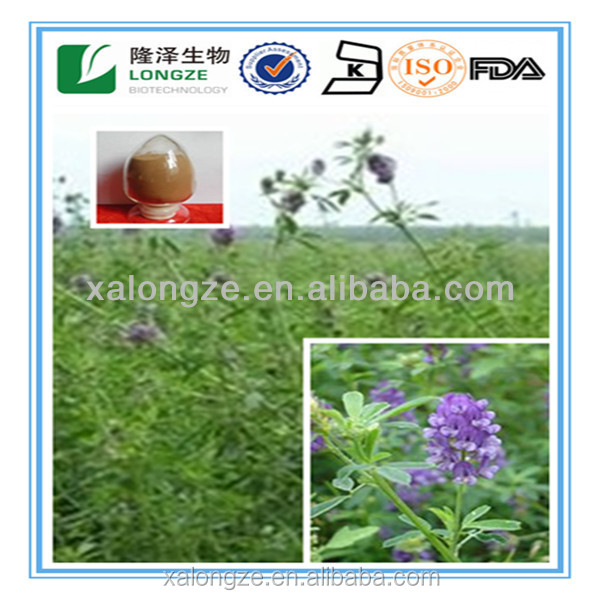 100% Natural plant extract Alfalfa Extract <strong>powder</strong>
