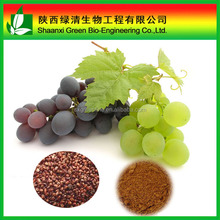 Professional Manufacturer Pure Natural Grape SeedS Extract Powder