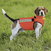 Wholesale Clothes of Dog Waterproof and Windproof Neoprene Clothes for Dog