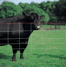 Beef and dairy cattle fence wholesale