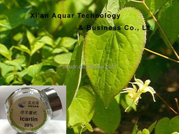 Manufacturer supply epimedium extract
