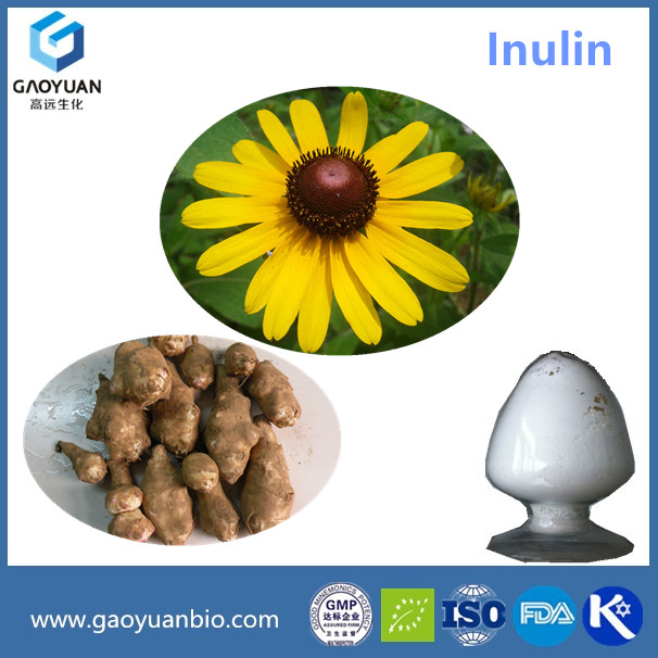 Manufacturer directely supply Organic Inulin/Inulin fibre/oligofructose Inulin