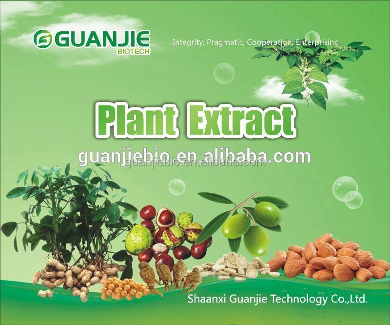Top Quality From 10 Years experience manufacture Sweet potato extract