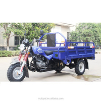 Motor Tricycle for Cargo 3 Wheels Car gas powered adult tricycle tricycle with motor