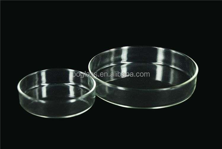 High quality glass/plastic petri dish 100mm petri dish container