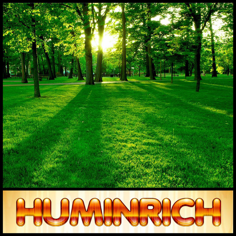 Huminrich Shenyang Slow Blackgold Humate Urea Fertilizer Chemical Formula
