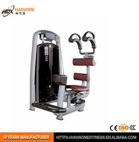 Discount Price Pro musculation life fitness gym equipment bodybuilder Rotary Torso