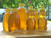 100 % Wild Acacia Honey packed in Bear bottles