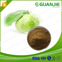 100% Natural Guava leaf extract Powder
