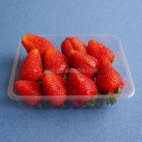 Customized clear plastic strawberry container wholesale