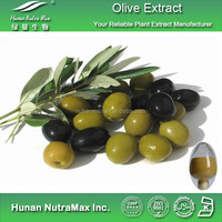 Pure Olive Fruit Extract Oleuropein 6% 20% 40% 80%