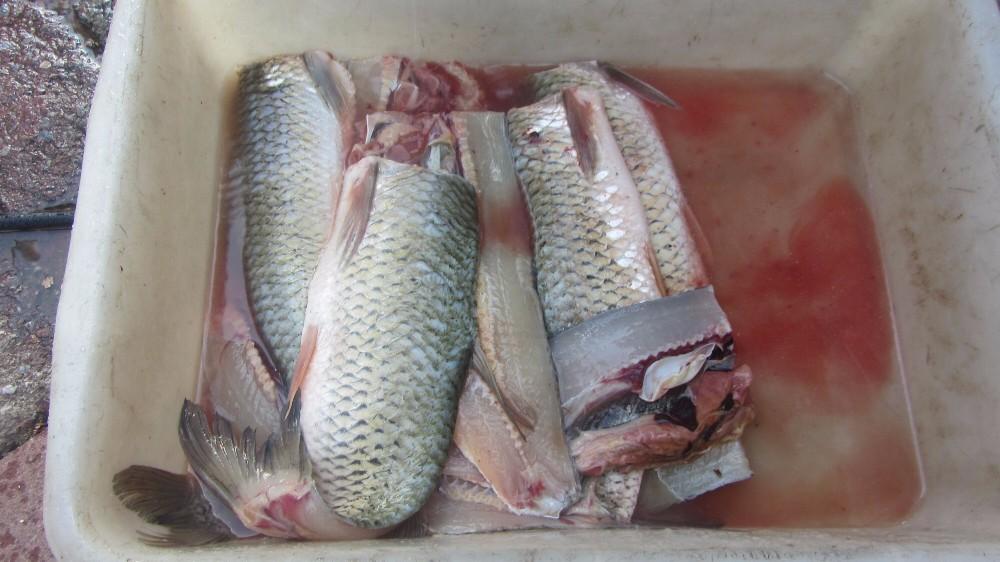 how to debone fish fillet
