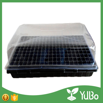 Cheap black greenhouse growing trays, plastic seedling tray with lid, mini greenhouse plant tray