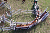 super quality oval square round pipe Hot dipped galvanized cattle panels ,cattle yard/,animal panels with gates