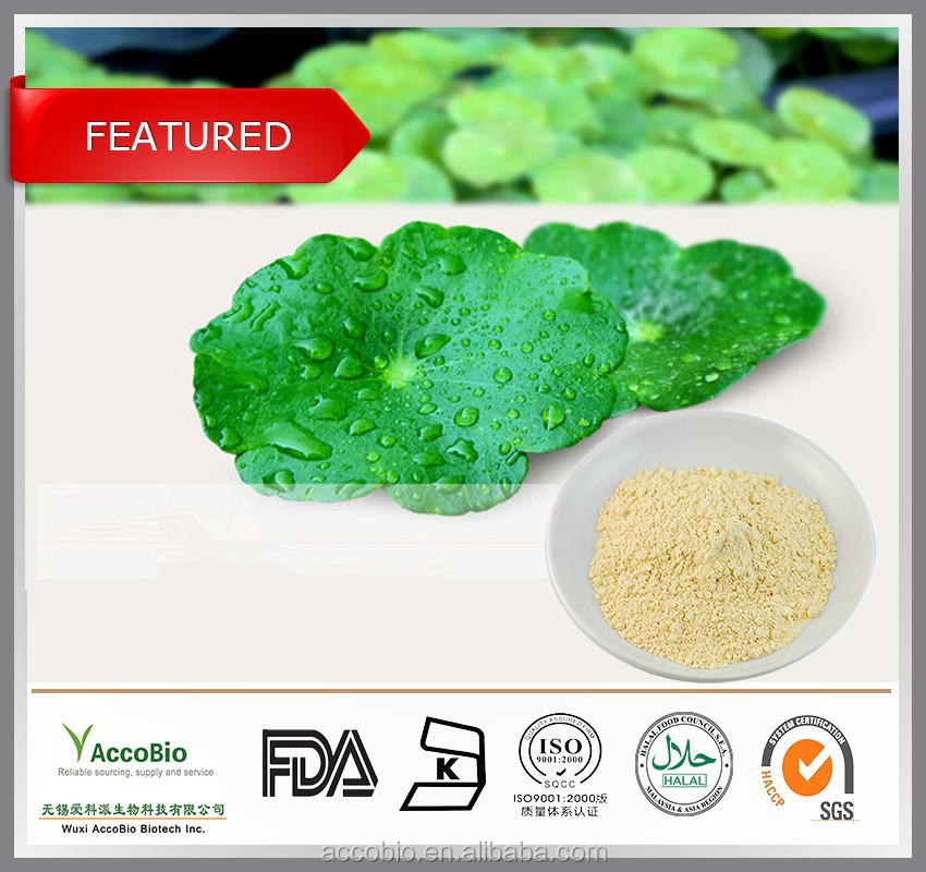 100% Pure Natural Pure Gotu Kola extract/Triterpenes 10%-80%, Asiaticoside 10%-90% HPLC