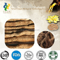 Best quality pure cistanche bark