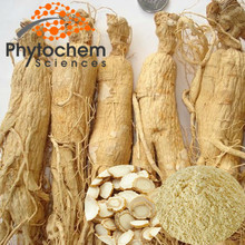 Health Care High Quality Ginseng Kianpi Pil for Sale