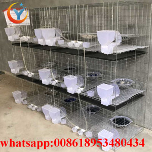 Hot Sale Steel Racing Pigeon Cage And Pigeon House For Pigeon layer