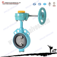 china manufacture price wafer stainless steel worm gear butterfly valve