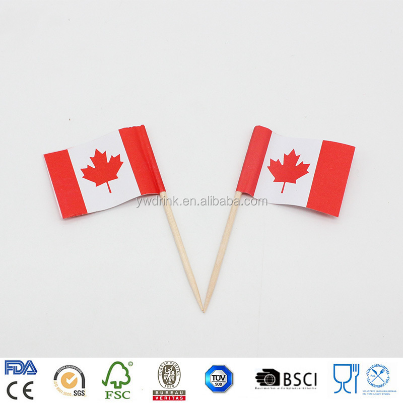 Canada Country Flag Toothpicks