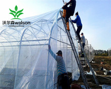 Cheap Collapsible Plastic Tunnel Outdoor Greenhouse for Sale