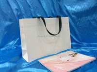 Factory professional large luxury paper shopping bag