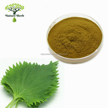 100% Natural Mulberry Leaf Extract 1-Deoxynojirimycin Powder