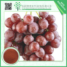 Natural Grape seed extract with 95% OPC by UV