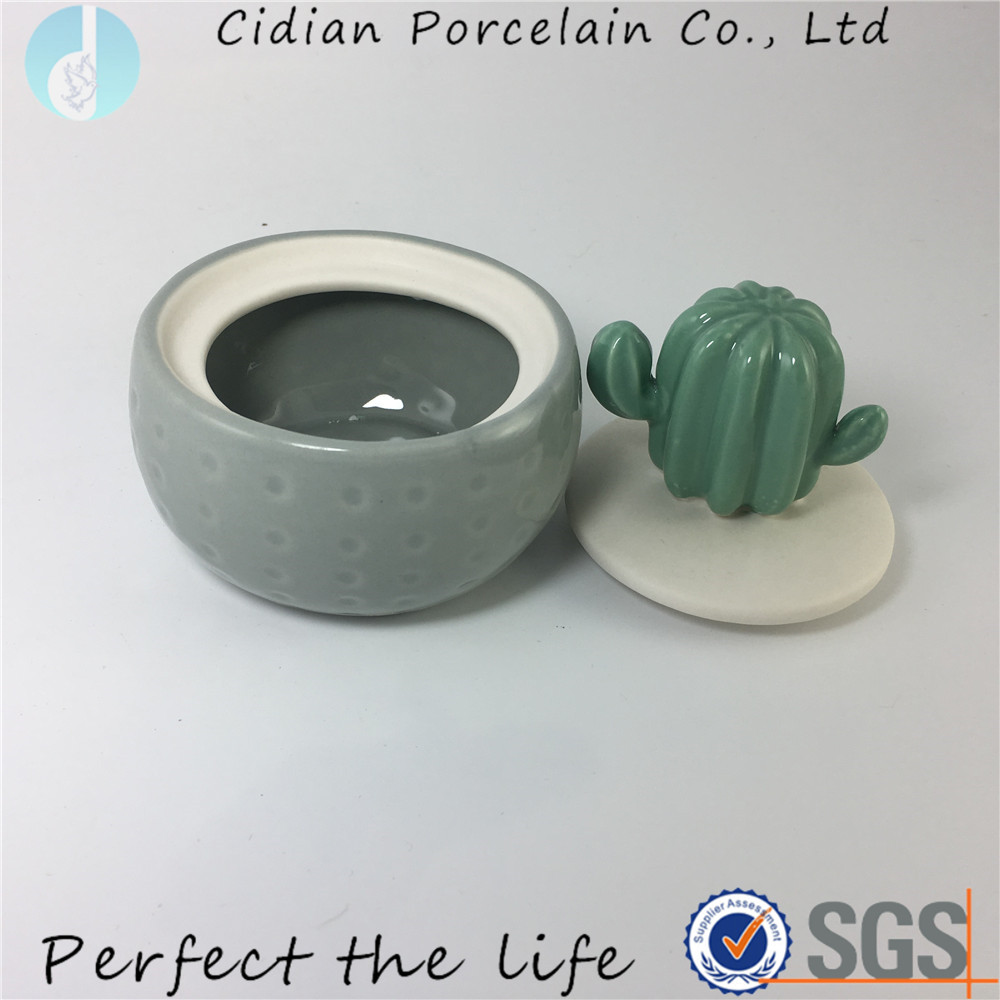 Ceramic cactus design jar ornament for home decoration