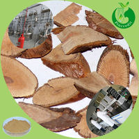 Pueraria Lobata Root Extract Powder