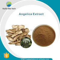 Angelica Root Extract Powder