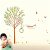 ZOOYOO green tree wallpaper 3d wall paper wallpaper for home decoration (PB7206AB)