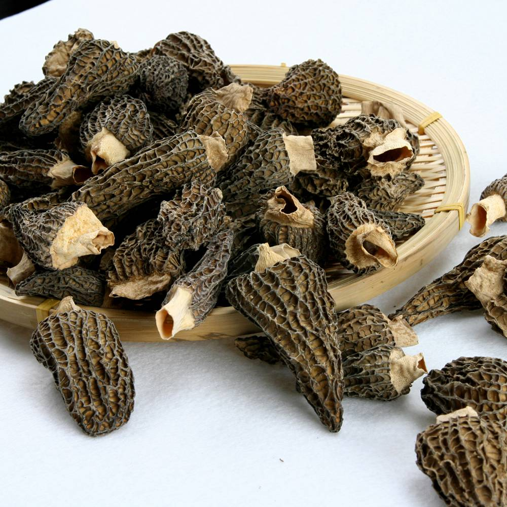 High quality cultivated dried sichuan HD054 where can you buy morel mushrooms