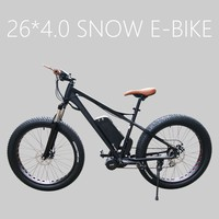 "26""*4.0 fat tire electric bike with fabang bbs02 mid motor"