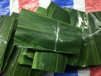 Natural Bamboo Leaves high quality bamboo leaves good Bamboo Leaves No pollution Fresh Sushi Bamboo leaves