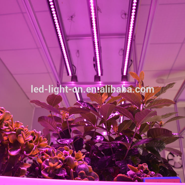 T8 length 120cm plant tube lamp 2 Years Warranty led plant grow light for microgreens