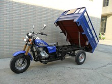 Hot Sale EEC 250cc 3 Wheel Motorcycle Cargo Use For On Sale