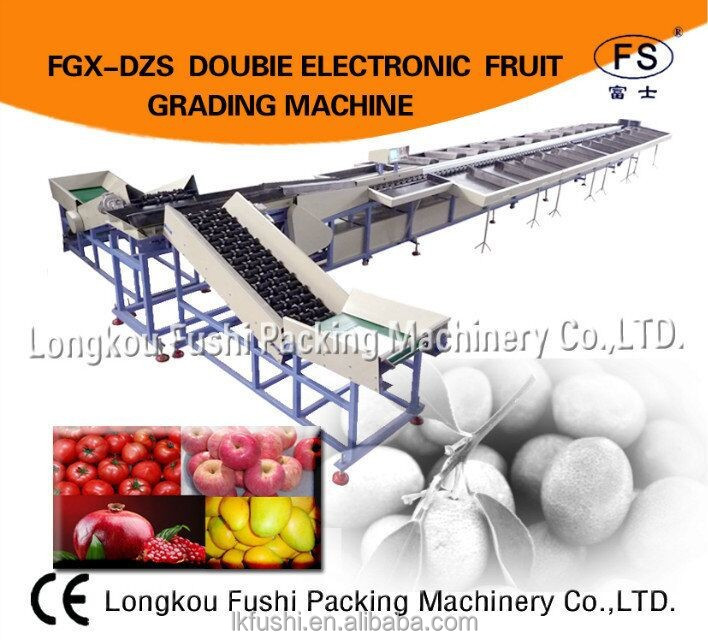 CE certification Cheap and Efficient fruit and vegetable grader