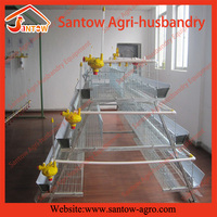Professional manufacture breeding chicken cages
