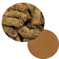 High quality morinda officinalis extract morinda root extract 10:1