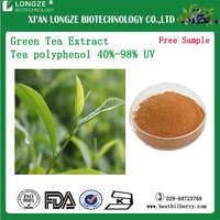 green tea leaf extract green tea extract green tea leaf concentrate extract powder