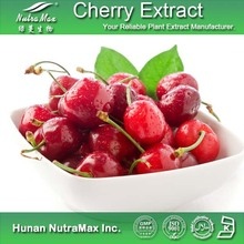 Food Grade Supplement Cherry P.E./Black Cherry Powder/Black Cherry Extract